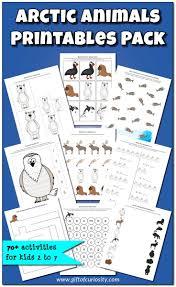 62 best penguin theme images on pinterest preschool winter