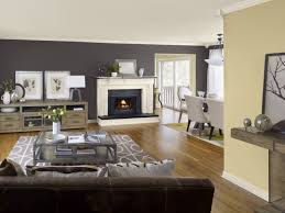 popular interior paint colors for living room with dark grey