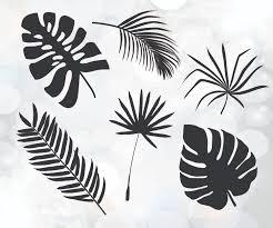 spider web svg palm leaves cuttable design tree leaves svg tropical svg