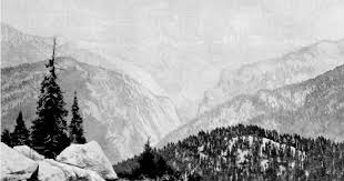 a rival of the yosemite by john muir the century magazine vol