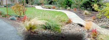 lawn drainage solutions eugene lawn drainage solutions eugene oregon