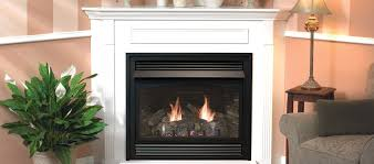 fireplaces extraordinary propane gas heating stoves free standing