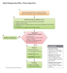 part 7 advanced cardiovascular life support u2013 ecc