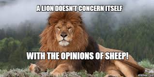 Lion Meme - a lion doesn t concern itself with the opinions of sheep memes