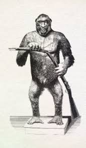 bigfoot potpourri bigfoot411