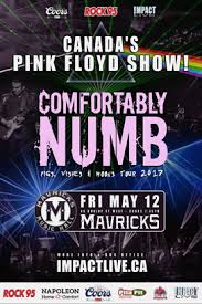 Comfortably Numb Cover Band Comfortably Numb Canada U0027s Pink Floyd Show Official Site