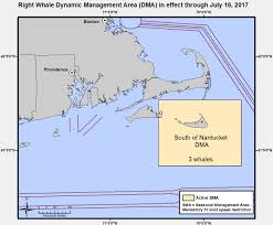 mariners urged to slow down south of nantucket to protect right whales