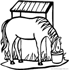 coloring pages penguins coloring 4 printable horse