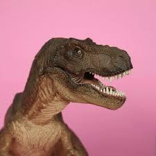 T Rex Bed Meme - dancing music video dinosaur t rex chomp hey violet tyrannosaurus