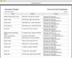 volunteer report template great volunteer roster template pictures inspiration resume