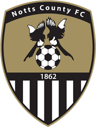 Nottinghamshire County Council Committee System Notts County F C