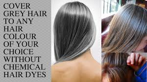 highlights to hide greyhair best color to disguise gray hair best hair 2017