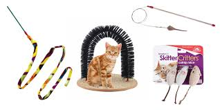 these are the 7 best selling cat toys on amazon the daily dot
