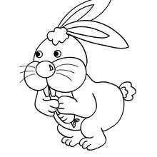 cute rabbit coloring pages hellokids