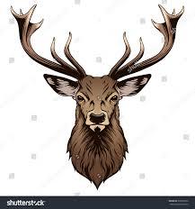 Deer Head by Deer Head Illustration Stock Vector 302066732 Shutterstock