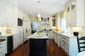 omega kitchen cabinets reviews omega kitchen cabinets reviews kitchen traditional with under