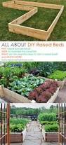 Raised Beds For Gardening How To Build And Install A Raised Garden Bed Gardens Garden