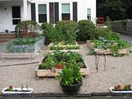 front yard vegetable garden design 38 homes that turned their