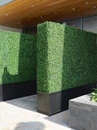 backdrop rentals boxwood backdrop curate décor design hawaii event design