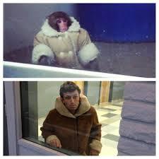Ikea Monkey Meme - ikea monkey meme meaning image memes at relatably com