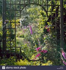 fence of ornamental trellis framing the view credit