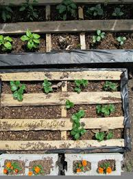 Garden Pallet Ideas Pallet Garden How To Make Raised Wood Pallet Garden Bed