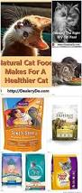 best 25 cat food brands ideas on pinterest best cat food