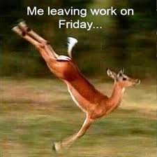 Memes About Friday - 55 crazy friday memes