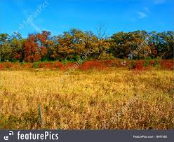 Wisconsin Scenery images Rural wisconsin landscape stock image i4947460 at featurepics jpg