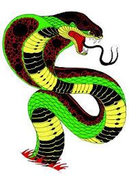 pin by mac on 02c01 平面 眼鏡蛇 cobra snake