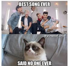 Internet Meme Song - grumpy cat sings best song ever by one direction pinteres