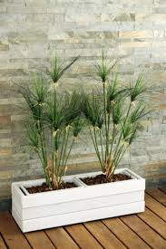 planter design low wooden planter design by alce