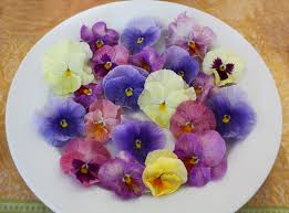 Where To Buy Edible Flowers - edible flowers