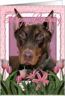 doberman pinscher birthday cards from greeting card universe
