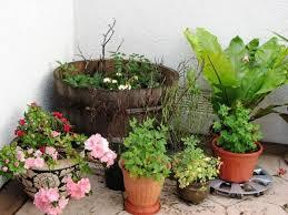66 best small balcony garden images on pinterest balcony