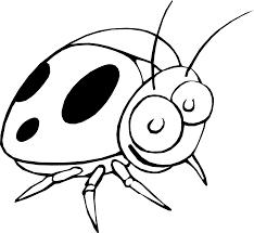 ladybug 17 black white flower pinterest coloring book colouring