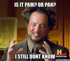Pamela Meme - pam is a meme google search parodies of my life whoa my