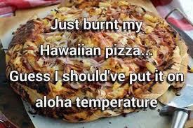 Meme Puns - just burnt my hawaiian pizza meme puns