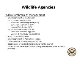 United States Department Of Interior Bureau Of Indian Affairs Wildlife Agencies Government Organizations That Work For Wildlife
