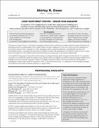 functional executive executive summary resume sles unique functional executive