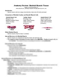 Anatomy And Physiology Cells And Tissues Anatomy Review Skeletal Muscle Tissue Docx Biology 2310 With