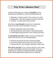 7 business plan proposal template budget proposal