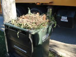 Waste Management Christmas Tree Pickup yard waste collection dubuque ia official website