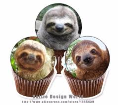 otter cake topper 24 sloth edible cake topper wafer rice paper for cake cupcake