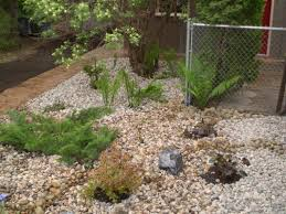 great low maintenance landscaping ideas for your yard exterior low