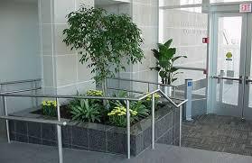 indoor planting indoor planting