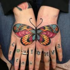 collection of 25 beautiful traditional butterfly
