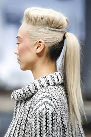 hair styles in two ponies two tone pony tail hairstyles wardrobelooks com
