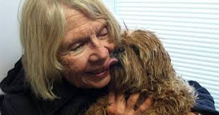Blind And Deaf Woman Firefighters Rescue Deaf And Blind Senior Dog From Sinkhole Dogtime