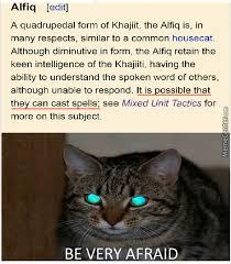 Khajiit Meme - khajiit memes best collection of funny khajiit pictures